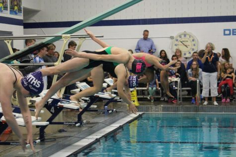 Girls swim meet at GHHS, featuring new blocks. Photo taken by Tatum Benson.